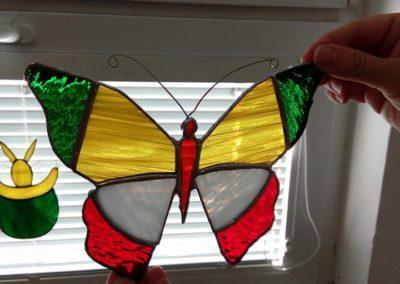 motýl - z kurzů