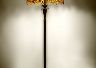 lampa - laburnum